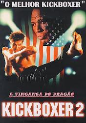 Baixe imagem de Kickboxer 2: A Vingança do Dragão (Dublado) sem Torrent