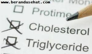 hal-penting-menurunkan-kolesterol