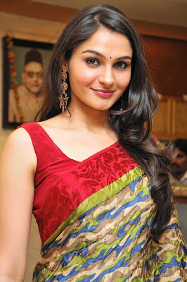 andrea jeremiah spicy in saree