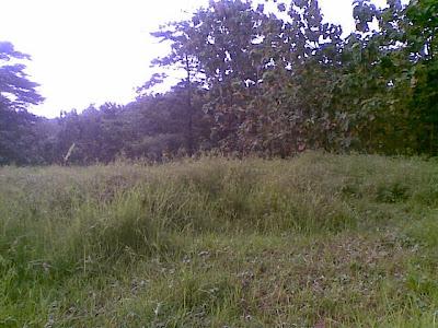Di Jual Tanah Murah Di Cirebon Kota Cocok Untuk Rumah