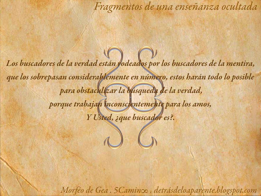 QC- Fichas