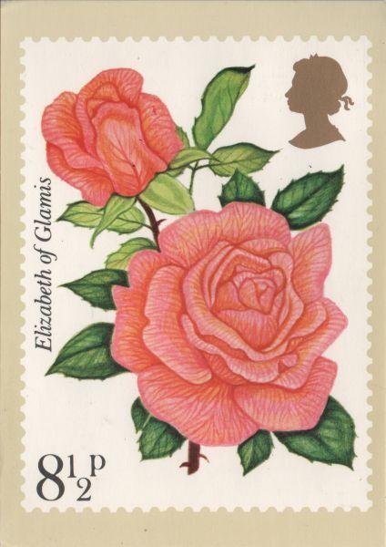 Royal Mail PHQ stamp card showing salmon pink rose