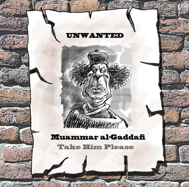 کاریکاتور ، کارتون ، معمر قذافی ، آگهی ، جایزه ، لیبی ، انقلاب ، مردم ، دیکتاتور عرب ، امیر المومنین ، دیوانه