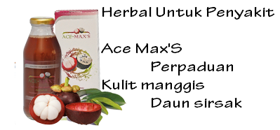 obat herbal diabetes melitus