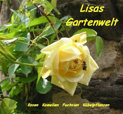 Lisas Gartenwelt