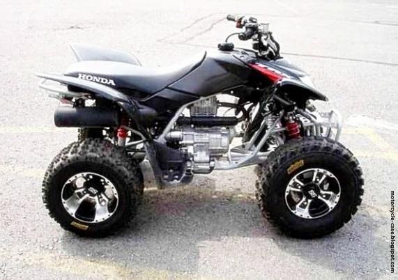 Honda Atv Trx250x 2011 Motorcycle Case