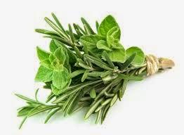 Image Obat Herbal Kutil Kelamin Luar
