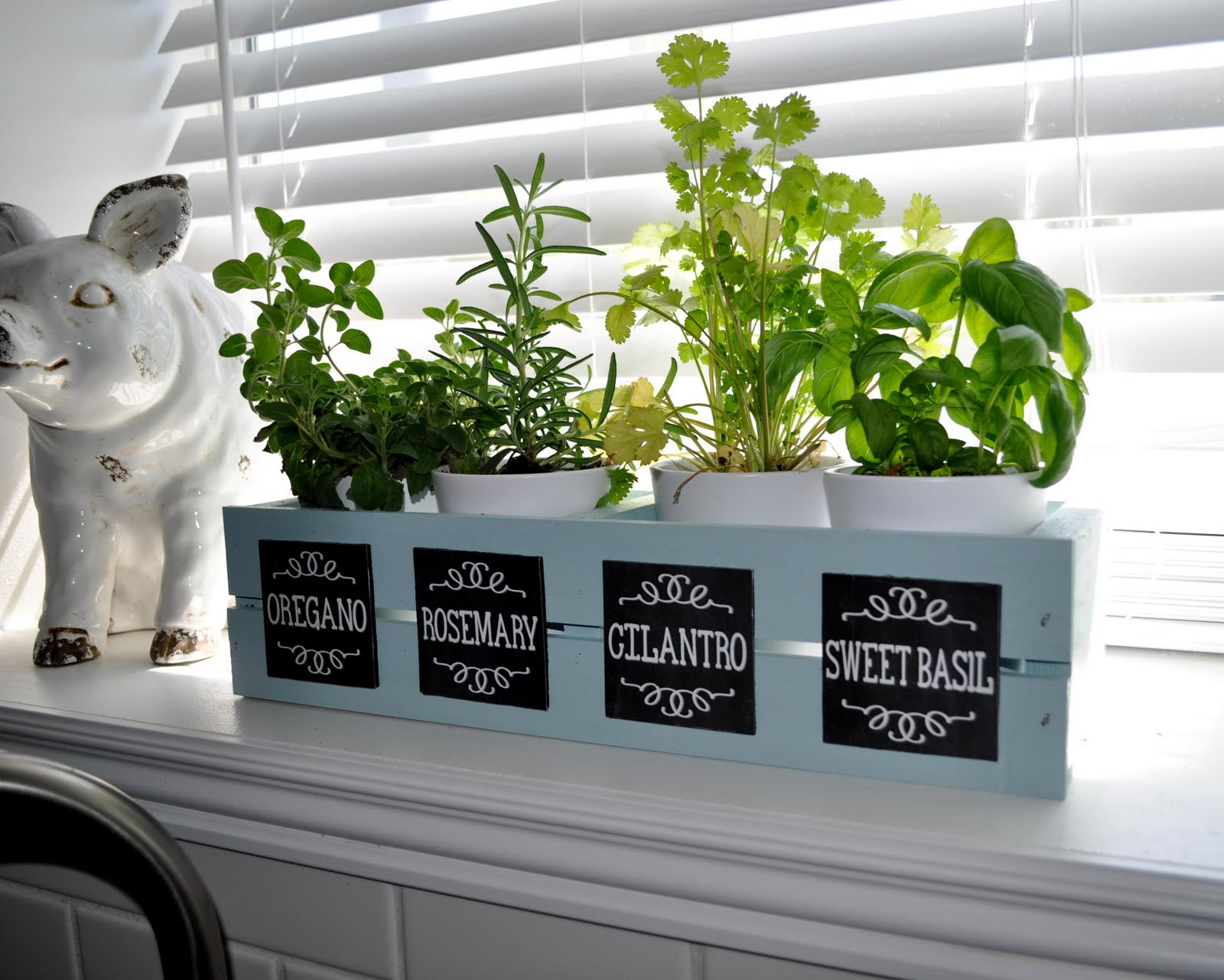 Sassy sanctuary window herb garden with chalkboard labels for Window garden