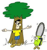 Medio ambiente tala de rboles for Como talar un arbol