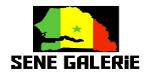 Sene Galerie: Le Site Officiel