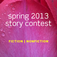 Spring 2013 Story Contest