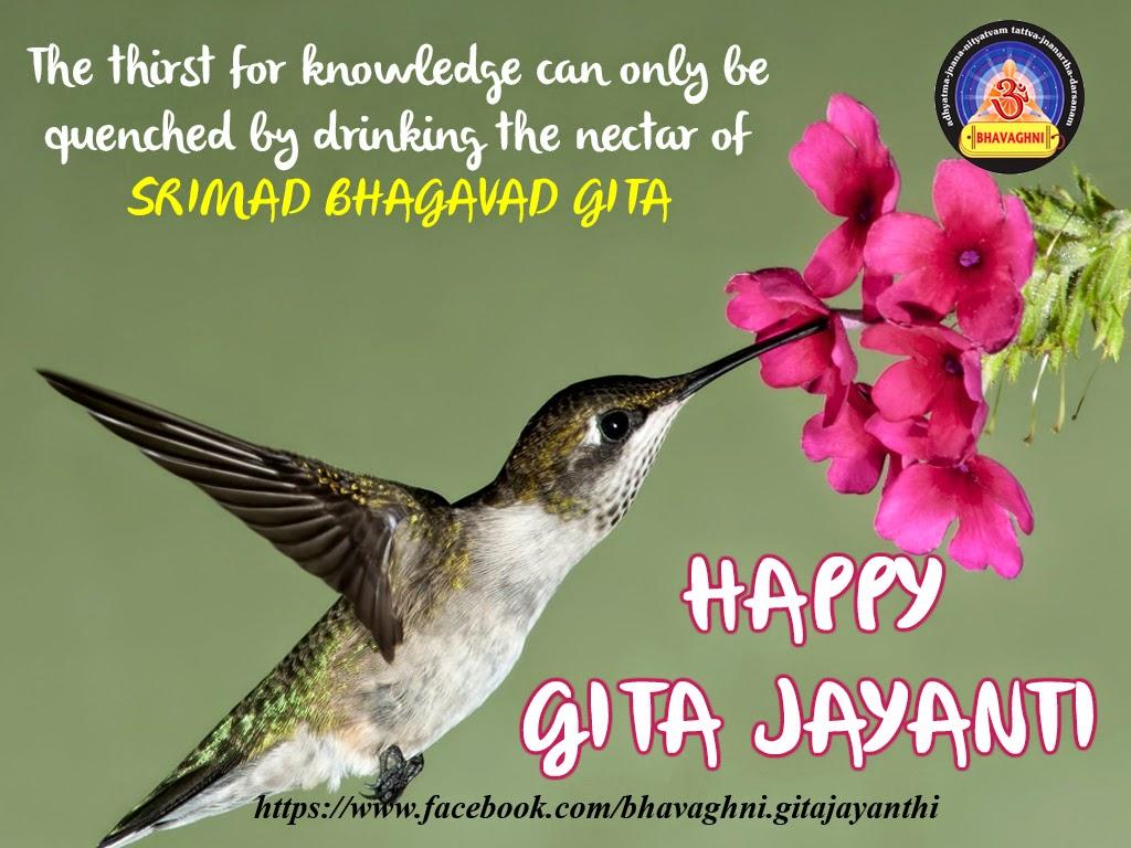 Happy Gita Jayanti ~ Gita Jayanti Greetings