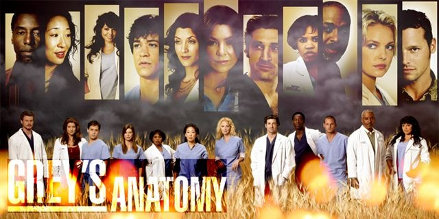 1176657094_greys_anatomy_bb.jpg
