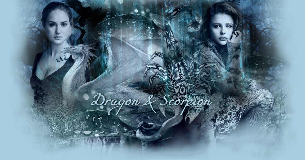 Dragon & Scorpion