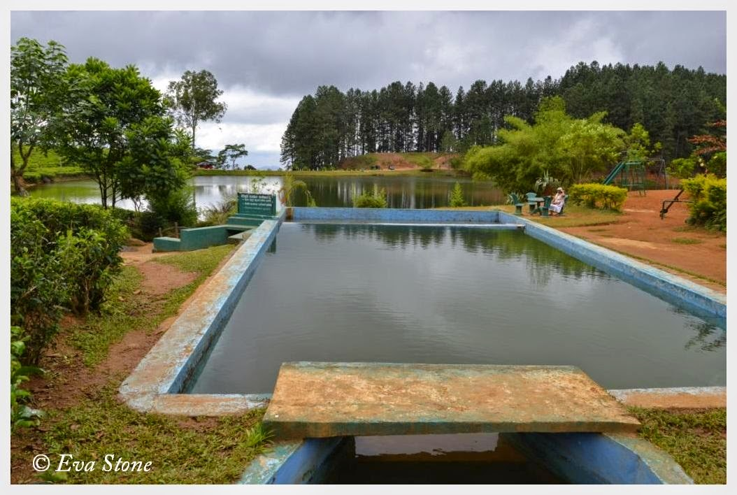 Eva Stone photo, swimming pool, play area, Sembuwaththe Lake, Elkaduwa Estate, Sri Lanka