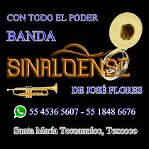 Banda Sinaloense de José Flores