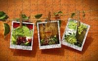Food - artistic