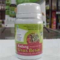 obat herbal radang usus besar