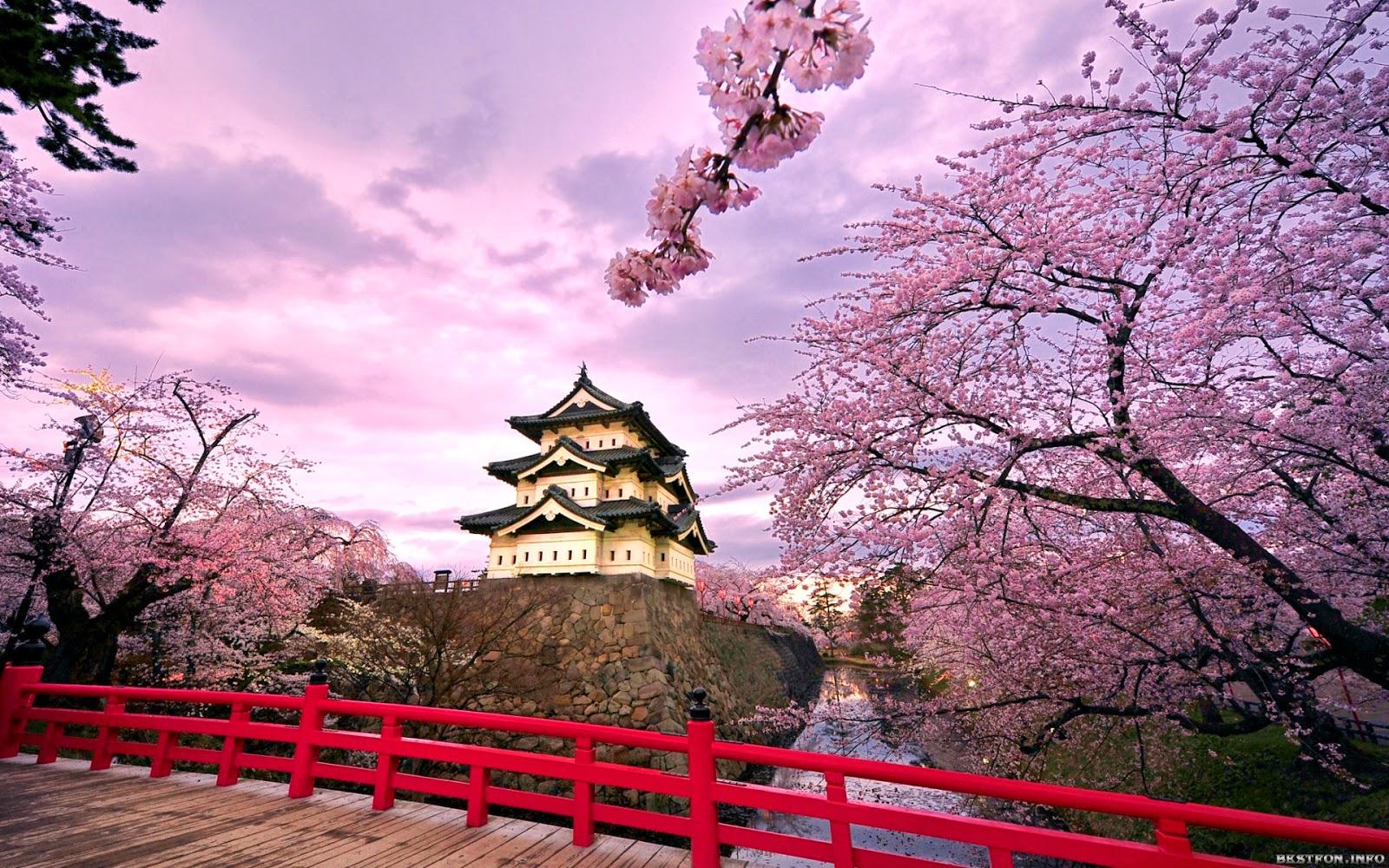 Japón y su Literatura