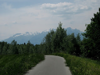 Biking through the forest, getting closer to the Alps, near Feldkirch, Austria