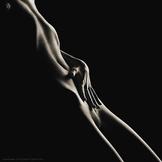 Torso Desnudo Foto Artistica