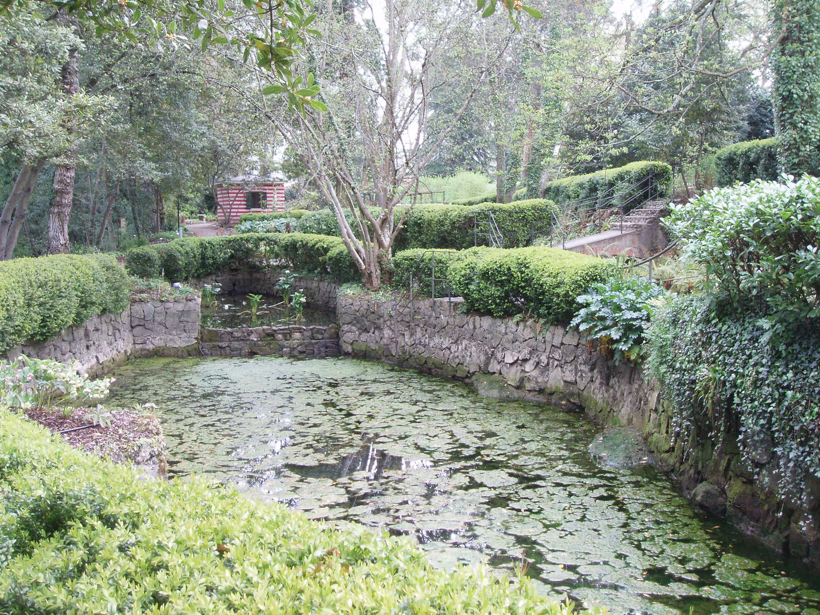Metido en jardines jard n bot nico atl ntico de gij n for El jardin botanico gijon