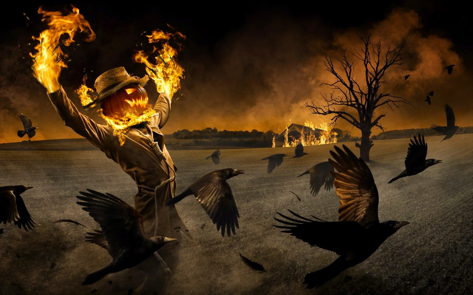 1680x1050-halloween-scarecrow-set-fire-to-home-with-crow-HD-image.jpg