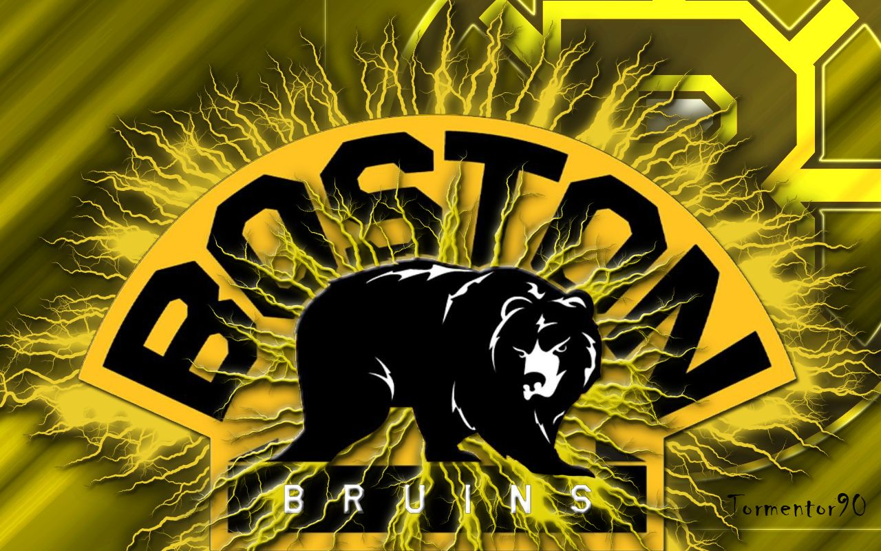 Boston Bruins Stanley Cup Winners 2011 And More