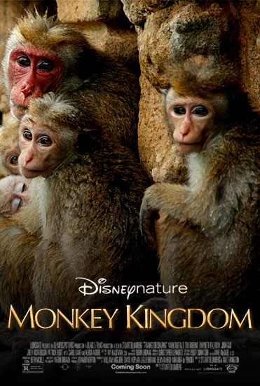 Disneynature: Monkey Kingdom (2015) อาณาจักรลิง จากป่าไม้สู่ป่าเมือง [ซับไทย]
