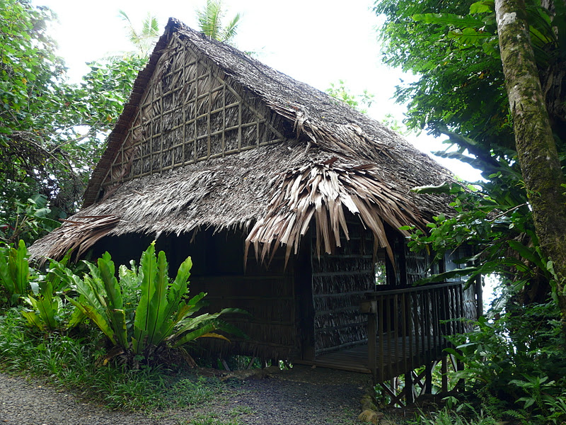 Tansy S Garden Micronesia Pohnpei