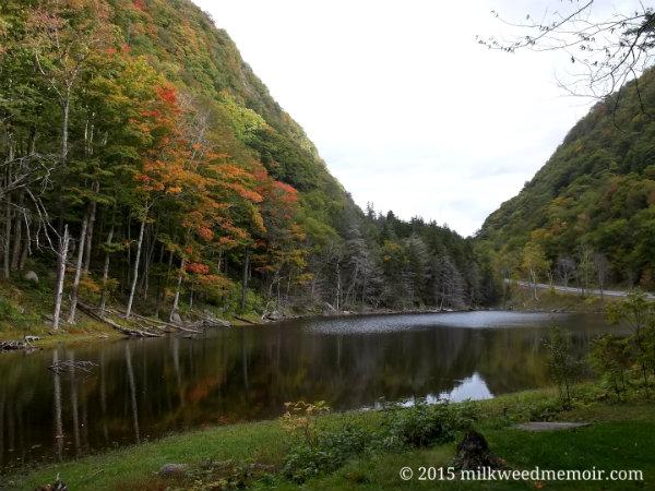 fall colors overhand Notch Lake in Catskill Park, New York, near Hunter