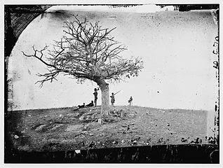 Antietam bandnaam uitleg - A Lonely Grave Antietam 1862