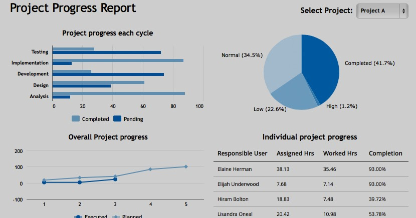 Training & Placement Cell,Rmcet,Ambav: Project Progress Report Format