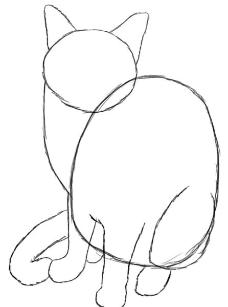 Draw B Cat B
