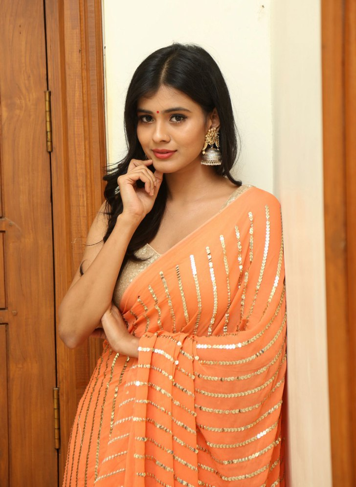 Hebah Patel Saree Hot
