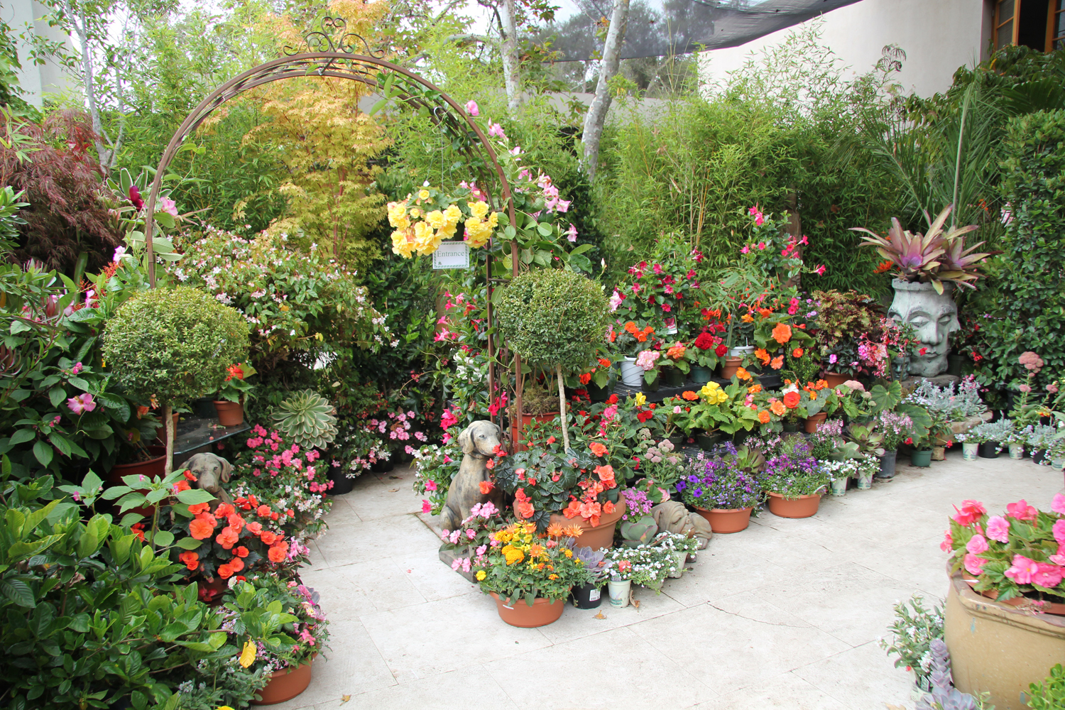 Flower Garden Gazebo : Flower Garden Gazebo Gazebo flower show - the