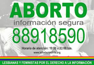 Lesbianas y Feministas por el derecho a la información