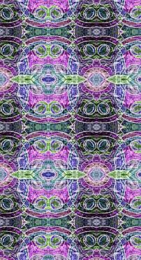 OWLS.1.19