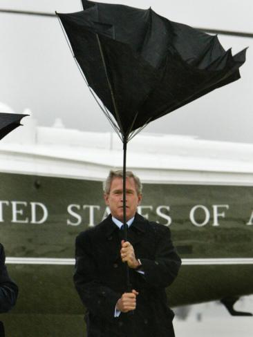 Bush+Umbrella.jpg