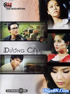 Dương Cầm - Duong Cam