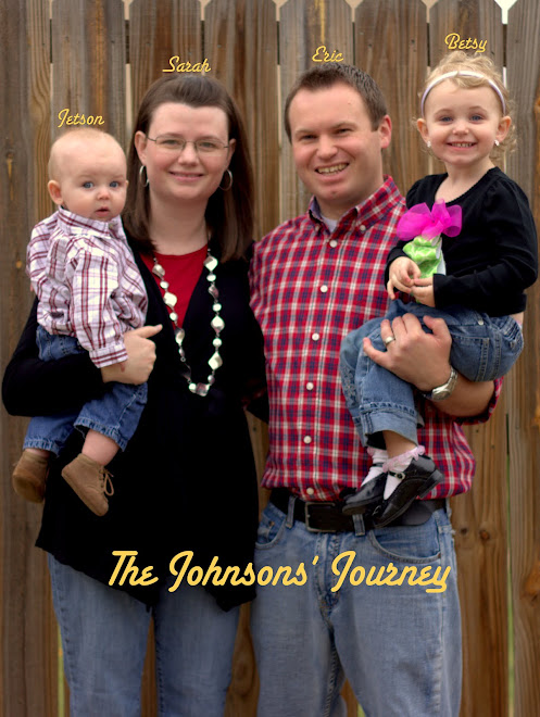 The Johnsons' Journey