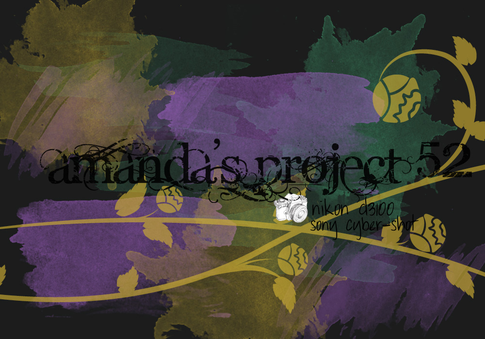 Amanda's Project 52