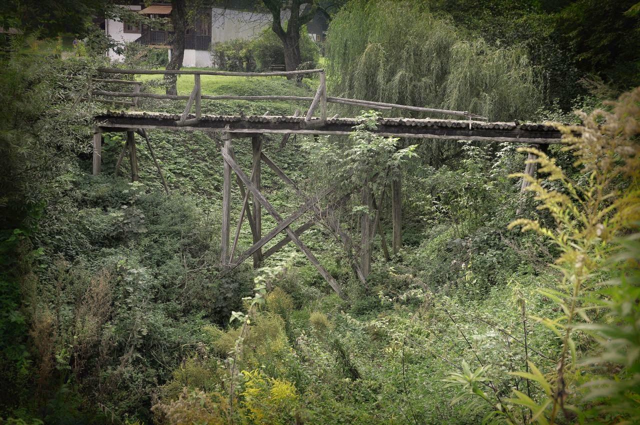 stary drewniany mostek w Ojcowie