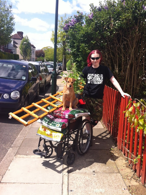Young person pushing a dog on gardening supplies in Twickenham