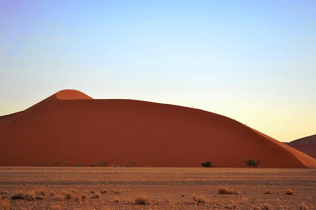 Tiny people dwarfed by Dune 45