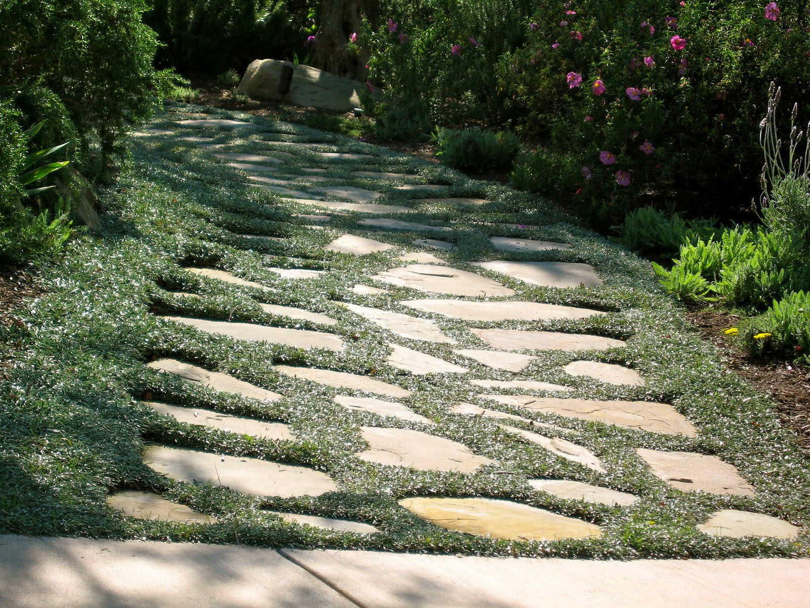 My california garden in zone 23 exquisite stone path for Stone path in grass