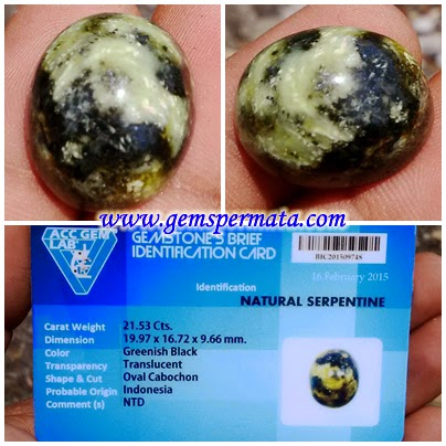 A678 Batu Permata Natural Serpentine Bermemo - Acc Gem Lab
