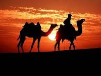 Perkembangan Ilmu Pengetahuan Islam Pada Masa Muawiyah