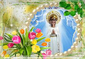 ✿*✿ IMPORTANTE: è necessario pregare ogni giorno per questa Missione perché è sotto attacco forte