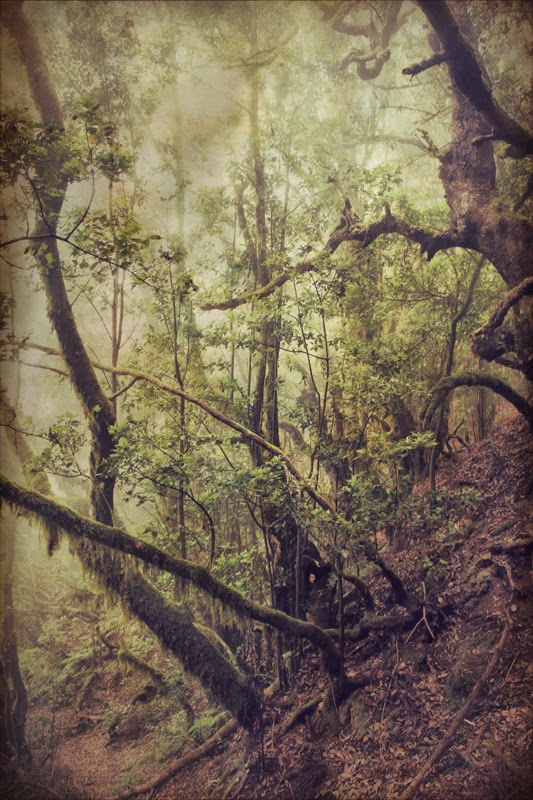 artwork, iphoneart, landscape Photo pictorialism, artwork for sale, photography for sale, Mobile photography, lopez moral, for sale art
